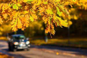 Skiftesperioden hösten är här